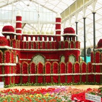Jan 2015 Lalbagh Flower Show