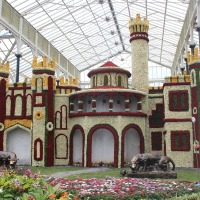 Lalbagh Flower Show August 2015