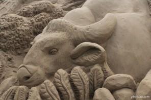 Sand Art of Bull