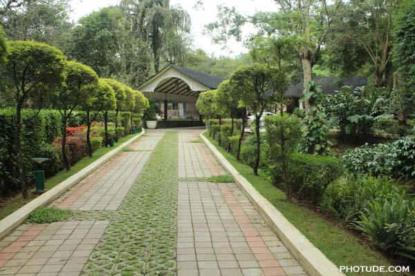 Entrance to Windflower Coorg
