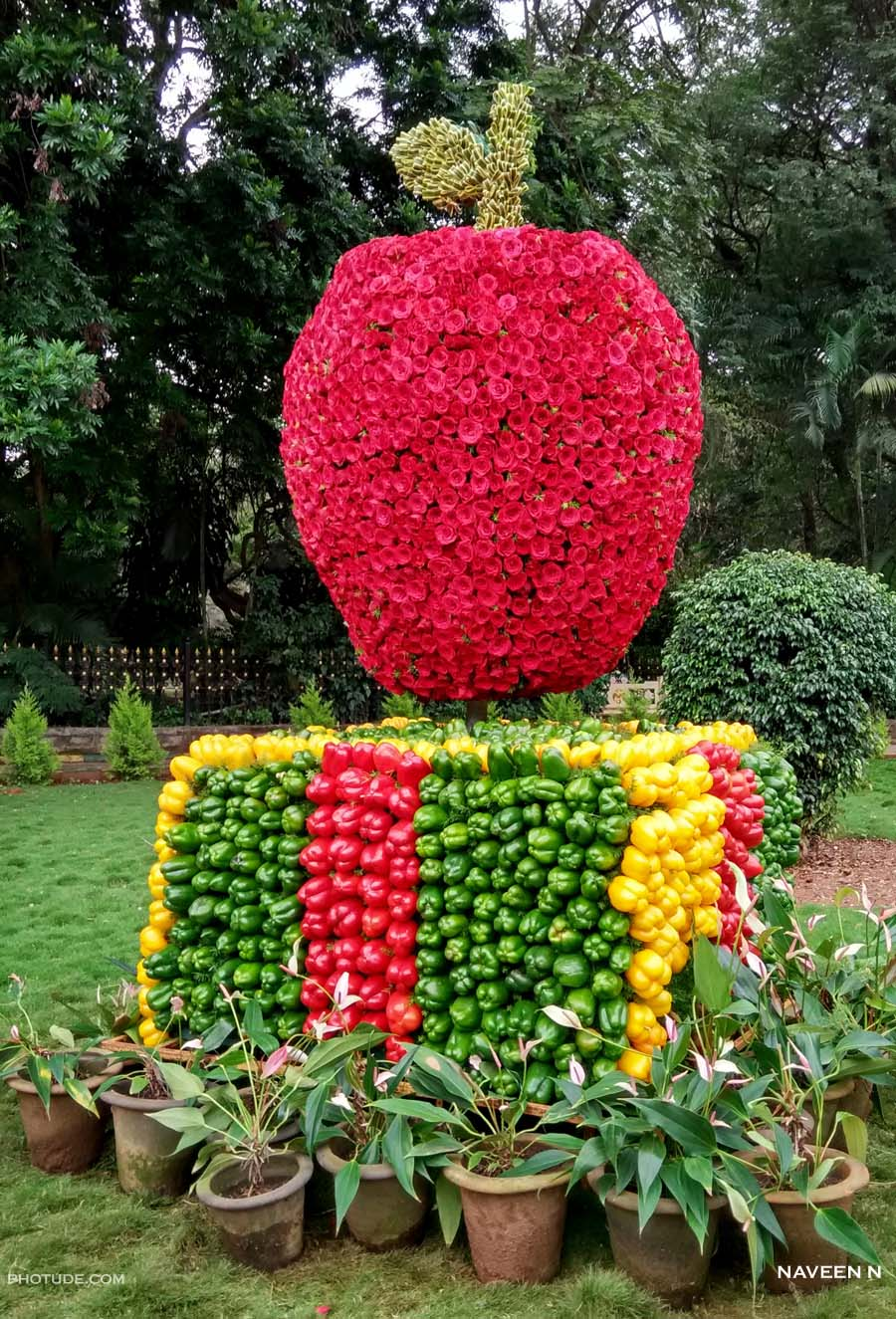 Apple made of Roses