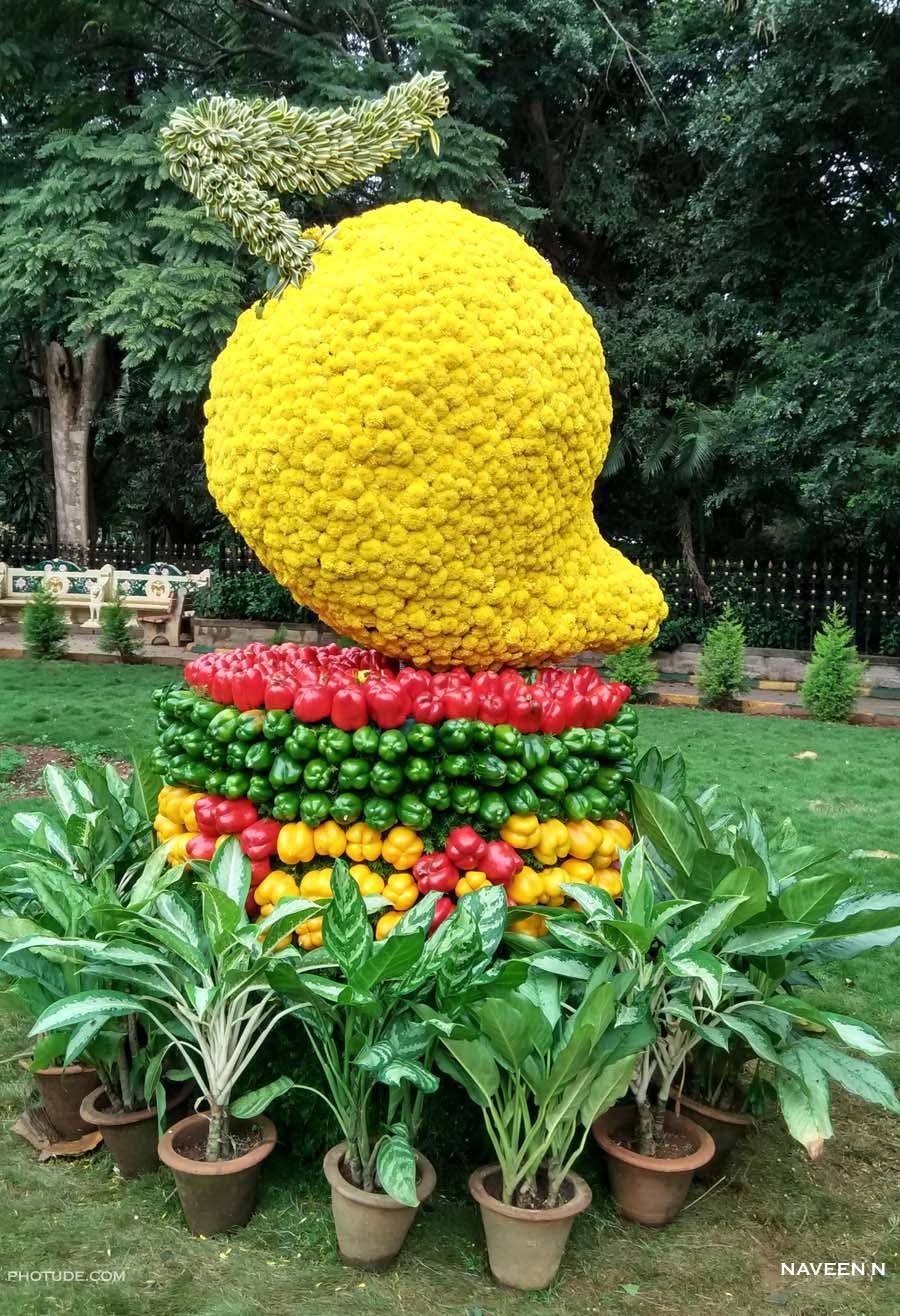 Floral Mango