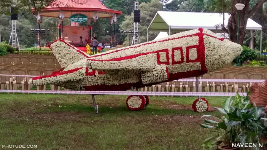 Plane made of flower