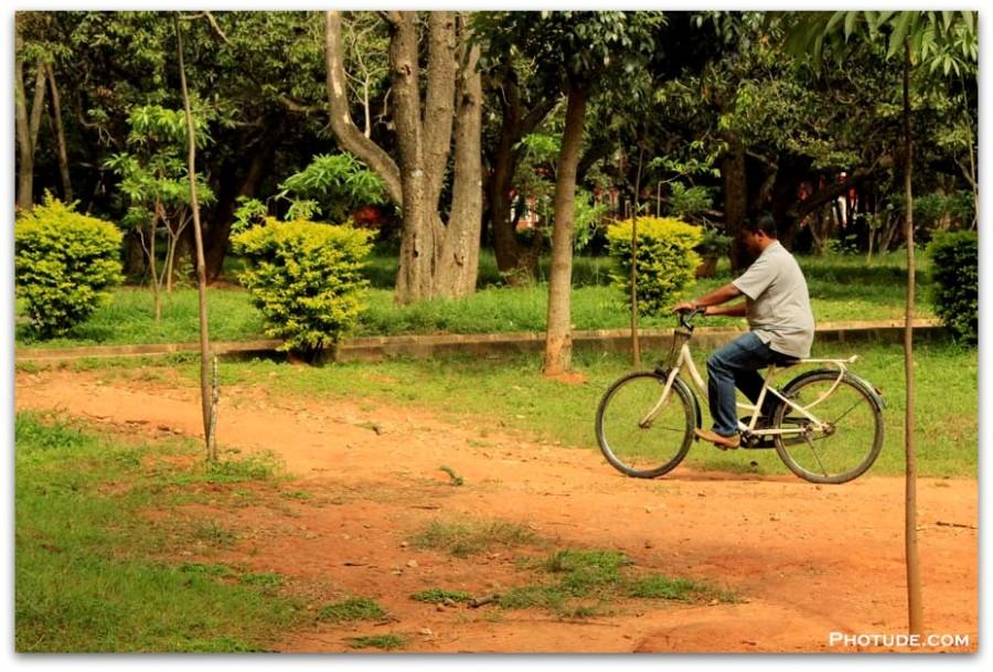 Dinesh Cycling